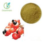 China Brown Fine Plant Extract Powder 20% Caffeine Guarana Extract Powder for sale