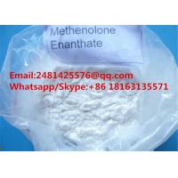 Safely Muscle Growth Steroids Methenolone Enanthate Primobolan Enanthate CAS 303-42-4 for sale