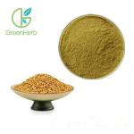 China Dredging Analgesic Plant Extract Powder White Mustard Seed Extract Powder for sale