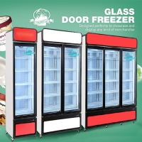 China Upright Commercial 2 Glass Door Refrigerator Freezer Showcase For Supermarket Chain Store for sale