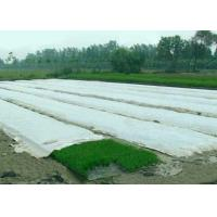 China 100% PP Spunbond Non Woven Fabric , Non Woven Landscape Fabric For Winter for sale