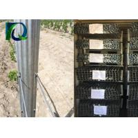 Steel Vineyard Grape Pole Metal Materials With 2.2M Height 2.0MM Thickness for sale