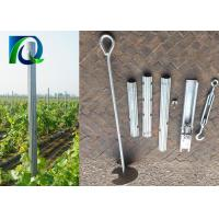2.0MM X 2.4M Trellising Metal Vineyard Posts Customized For Orchards And Grape for sale