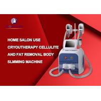 Professional RF Cavitation Cryolipolysis Fat Freeze Slimming Machine English Language for sale