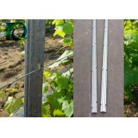 H - Shaped Holes Metal Posts For Orchards And Grape With 1.6-3.0MM Wire for sale