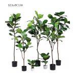 Fiddle Leaf Fig Plastic Plant Artificial Ficus Tree Interior Design Eco - Friendly for sale