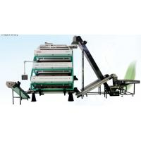 China Vertical Tea Colour Sorter Machine , Advanced Optical Sorting Equipment for sale