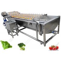 China Bubble Type Ozone Vegetable Washing Machine , Strawberry Cherry Fruit Washing Equipment for sale