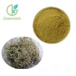 China Salicin 15% 25% 98% White Willow Bark Extract With HPLC Test Method for sale