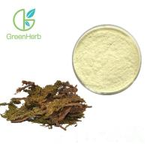 China 100% Natural Huperzia Serrata Plant Extract Powder 98% Huperzine-A CAS 102518-79-6 for sale