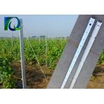 Heavy Duty Galvanized Vineyard Grape Pole 1.5MM x 2.4M Metal Orchard Post for sale