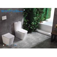 High end European Standard Wall Faced Toilet Ceramic Two Piece 545*360*410mm for sale