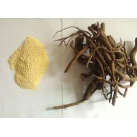 China Yellow Color Plant Extract Powder Kava Extract Powder Kavalactone 10% - 70% supplier