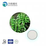 Grade AAAAA Plant Extract Powder Huperzia Serrate Extract CAS 102158-79-6 for sale