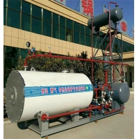 China WNS Thermal 95% Gas Fired Hot Water Furnace Vertical for sale