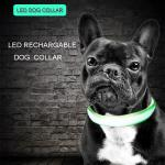 China C906 Wholesale Factory Cheap Price C906 Luminous Nylon Pet USB Rechargeable Led Dog Collar for safety for sale