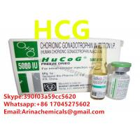 ISO SGS HGG Human Growth Hormone , Hgh Raw Materials Muscle Hormone Supplements for sale