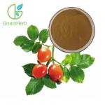 China Fruit Extract Powder Herbal Extract Rose Hips Extract Powder 5% VC for sale