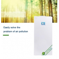 China Duct Installation 95% Filtration Wall Mounted Air Purifier for sale