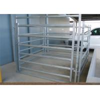 China Farm Agriculture Welded Heavy Duty Cattle Panels 6 Bar Horse Gate Panels for sale