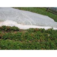 China Eco Friendly Agriculture Non Woven Fabric With 1% - 4% UV Treated OEM / ODM Available for sale