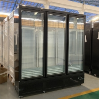 China RUIBEI Auto Defrost Upright Beverages Showcase Double Glass Doors Freezer Refrigerator for sale