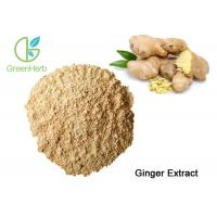 China Factory Supply Natural Ginger Root Extract Gingerol Powder for sale