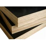 15mm Or Customized Construction Film Faced Plywood Free Sample for sale