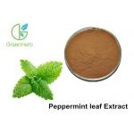China ISO Standard Peppermint Leaf Extract / Food Grade Peppermint Extract Powder for sale