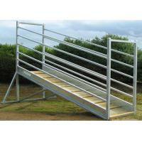 115mm X 42mm Oval Rail Cattle Loading Ramp 300mm Steel Side Sheet for sale