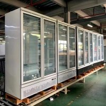 China 2 Door Grocery Shop Upright Glass Door Freezer Cooler for sale