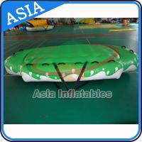 3.3m X 2.1m Digital Printing UFO Inflatable Water Boat Customized Color for sale