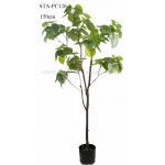 Heart Shape Green Leaves Artificial Ficus Tree 120CM 150CM 180CM 210CM for sale