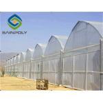 Hot Galvanized Steel 8m Polyethylene Film Greenhouse