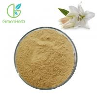 China Free Samples Natural 10:1 Lily Bulb Extract Powder White Lily Extract for sale