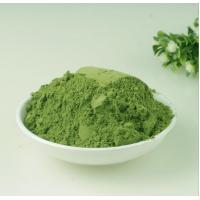 Green Fine Plant Extract Powder Organic Moringa Leaf Powder Health Benefits for sale