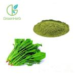 China Green Pure Natural Fruit Spinach Extract Powder With HPLC Test Method for sale
