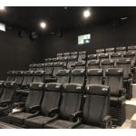 China Fantastic Simulating 4D Cinema System With Physical Effect For Business Center for sale