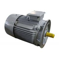 Y2-132M1-2  3 Phase Induction Motor Cast Iron  10kw Small Variable Speed for sale