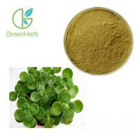China HPLC Test Pure Natural Plant Extract Powder Plectranthus Amboinicus Extract Brown Fine Powder for sale