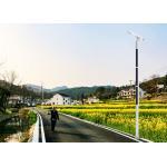 China Patent design solar light pole 5m 6m 8m 10m solar street light for sale