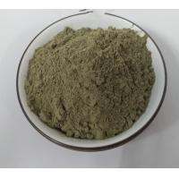 Pain Relief Plant Extract Powder Urtica Cannabina Organic Nettle Powder for sale