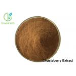 China High quality Vitex agnus-castus Chasteberry Extract Chaste Tree Extract Powder for sale