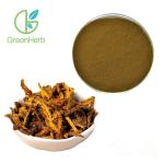 China Pure Natural Goldenseal Extract, Goldenseal P.E., Goldenseal Root Powder for sale