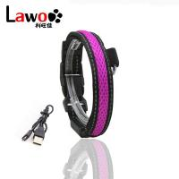 China Customized LED Dog Collar Waterproof Luminous Colour Blue USB Rechargeable for sale