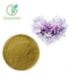 China Flower 100% Natural Syzygium Aromaticum Extract Clove Extract Eugenol Powder for sale