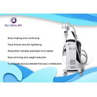 China Cryolipolysis Body Slimming Machine , RF Slimming Weight Loss Machine supplier