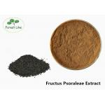 Food Grade Plant Extract Powder Fructus Psoraleae Extract Cool Dried Storage