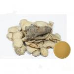 China Fine Brown Plant Extract Powder Natural Panax Notoginseng Root Extract For Medicine for sale