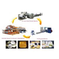 Disposable Clamshell Take-out PS Foam Food Containers Making Machine